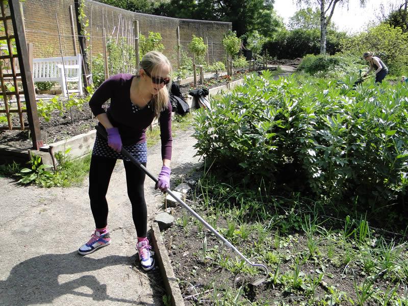 Community Gardening Sunday, April 2014 (credit Romana Sustar)