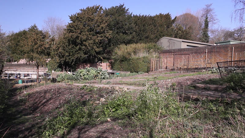 View from bottom of garden, March 2014 (credit Neil Cheshire)